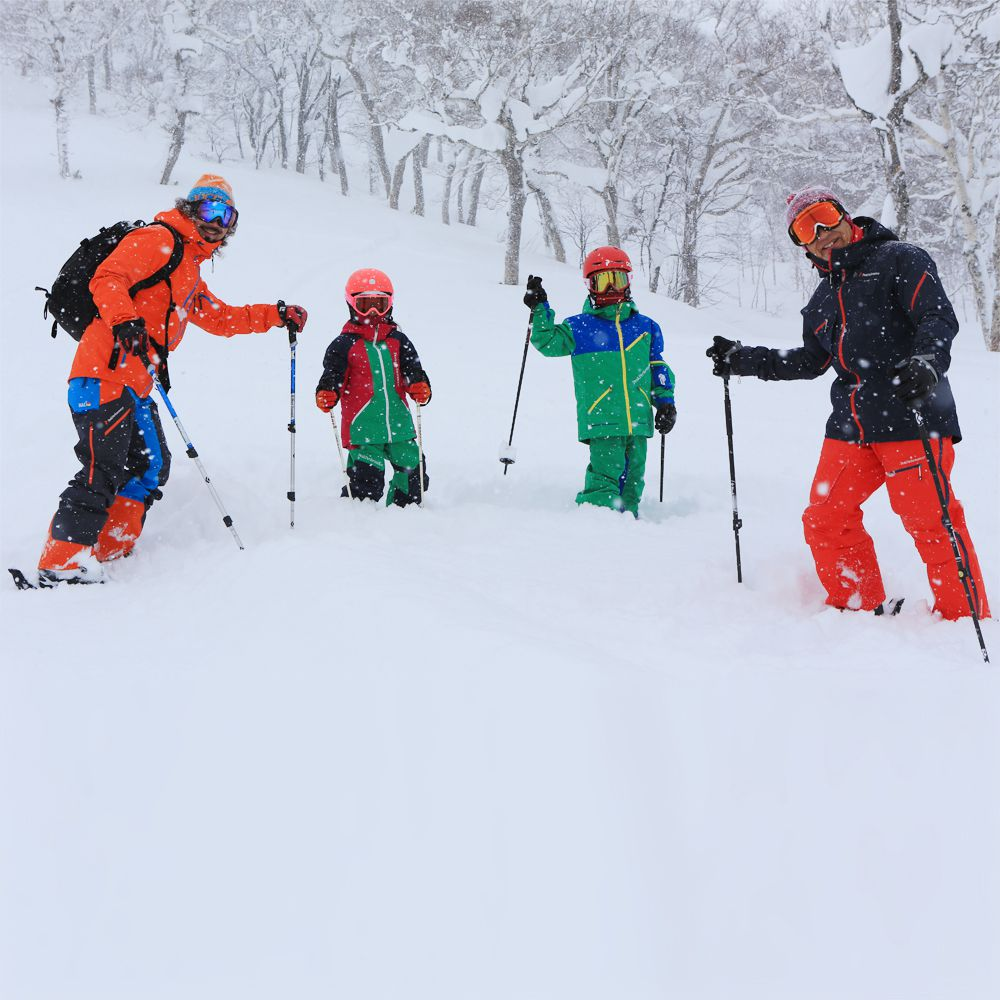 ski resorts management A competitive ski resort development and its efficient management both have a  high cost in terms of investment and maintenance there is strong need for a long .